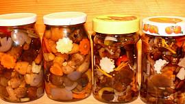 Kyselé houbičky podle Romana Pauluse: Rady a tipy, jak dary lesa správně naložit