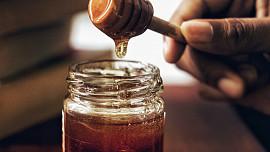 Mražený med: delikatesa nebo jed? Odpověď medového sommeliera vás možná překvapí!