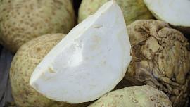 Římané věřili, že přináší štěstí: Celer je přírodní afrodisiakum plné vitamínů
