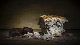 Pivo v misce nebo pečená toulavá kočka: Středověký jídelníček chudých byl noční můra