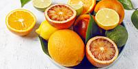 Poznejte tajemství citrusů: Co v nich je pro nás zdravé a které druhy se dají vypěstovat doma?