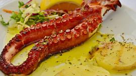 Grilování jako u moře: Zkuste si připravit opečené olihně nebo salát z chobotnice