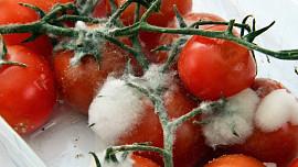 Vyhněte se E. coli! 7 potravin, které rozhodně nejezte po datu spotřeby