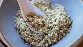 Konopné semínko jako superpotravina: Hodí se do salátu i na výrobu skvělého mléka