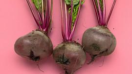Podzimní dieta, díll II.: Dalších 5 sezónních potravin, které rozhodně musíte vyzkoušet