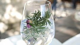 Lék na žaludek, který opil celou Británii: Kde se vzal tradiční gin? V Anglii to nebylo...