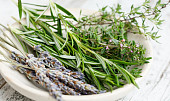 Vaření sčerstvými bylinkami: Co s mátou? A jak si zamilovat kopr?