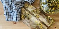 Byliny v kuchyni: Třezalka pomůže proti nespavosti i úzkostem. Jak poznat ten správný druh?