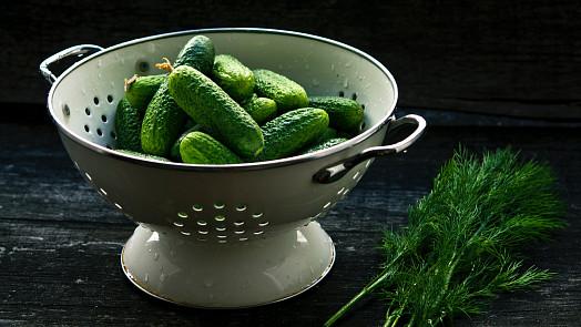 Recept na babiččiny kvašáky: K dokonalosti pomůžou vinné listy, kopr nebo kousek chleba