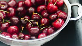 Kolik třešní, tolik višní: Čím se liší červené letní plody a kdy na ně vyrazit?
