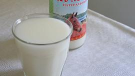Jedlík testuje nejbizarnější kuchyně: Jak se vyrábí pivo z koňského mléka?