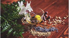 4 základní bylinné čaje, které byste měli pít: Vyřeší špatný spánek i bolesti