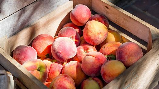 Šťavnaté broskve neboli perská jablka jsou považována za symbol dlouhověkosti. Víte, proč?