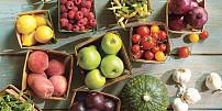 Na farmářské trhy s jistotou