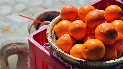 Šílené chutě světových diktátorů: Mučení nepřátel jako zákusek a pomeranče místo viagry