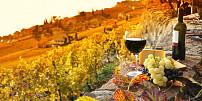 """Nečekejte na vinobraní, vyrazte na Moravu za dobrým vínem na """"Zarážání hory"""""""
