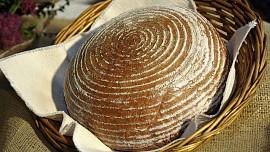 Dny chleba se po dvou letech vracejí do Pardubic.   Odborníci vyberou nejlepší chléb z80 soutěžních vzorků