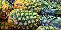 Historie ananasu: Býval symbolem bohatství a luxusu, dnes se dává na pizzu