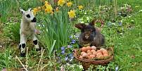 Velikonoce na talíři: Co jíst na Zelený čtvrtek, který vlastně zelený být neměl?