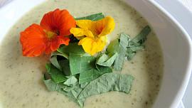 Byliny v kuchyni: Lichořeřišnice vyléčí zánět a skvěle ochutí salát i polévku