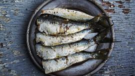 Ryby jsou plné vitamínů a zdravých tuků. Podle čeho poznáte opravdu čerstvý kousek?