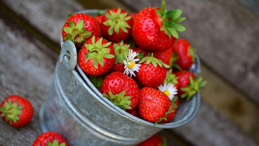 Byliny v kuchyni: Co dokáže jahodník? Listy zlepší trávení, plody vyčistí střeva