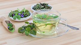 Bylinky podle horoskopu: Uvařte si čaj zléčivky, která odpovídá vašemu znamení