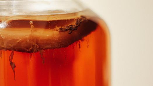 Hit sezóny: Domácí fermentace! Přinášíme snadný návod, jak na to