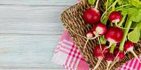 Ředkvičky jsou malé krásky svelkým účinkem. Která jejich část je nejzdravější?