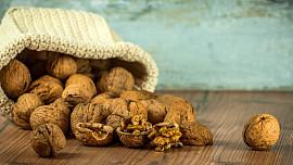 Vlašské ořechy zlepšují paměť i náladu a prospívají také srdci. Naložte je do medu!