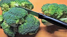 Rady pro uskladnění a zpracování brokolice: Nemraženou ji dlouho neskladujeme