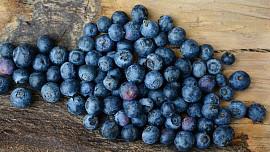 Lákají vás borůvky? Jak zdravé a chutné plody nejlépe zpracovat