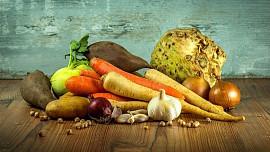 Sklizenou zeleninu můžeme usušit, zmrazit, zavařit nebo nechat zkysat