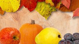 Na podzim vydá zahrada poslední plody. Takhle je můžete zpracovat
