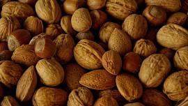 Ořechy jsou zdravé a chutné, můžeme je uchovat i zpracovat v kuchyni