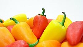 Papriky mohou tvořit hlavní chod, být součástí zeleninové směsi, a nebo je můžeme zavařit na zimu
