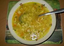 Vločková polévka
