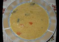 Zeleninová polévka krémová