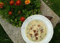 Drožďová polévka s medvědím česnekem
