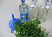 Mátový likér - žaludeční
