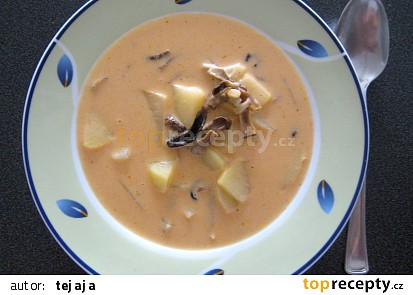 Kyselá polévka  se sušenými houbami