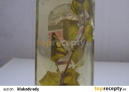 Octy - koprový a meduňkový