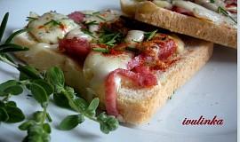 Rychlo pizza