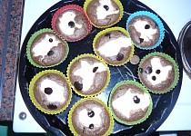 Muffiny - dietní