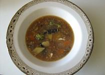 Bramborová polévka JÁ