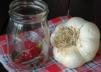 Pikantní česnek