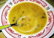 Polévka z dýně s pohánkou
