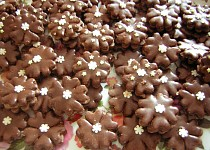 Čokoládové pětilístky s vločkou