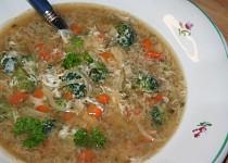 Rychlá nudlová polévka pro batolata