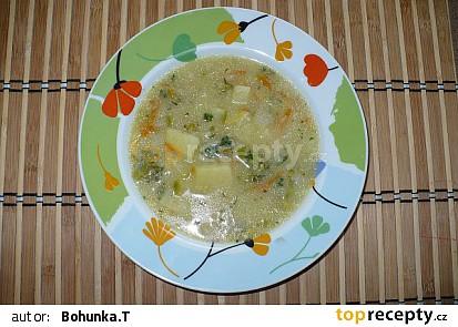 Zeleninová polévka s vločkami